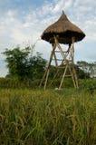 Torre di legno dell'orologio Fotografie Stock