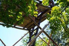 Torre di legno nel evski Rog del  di KoÄ Fotografia Stock Libera da Diritti