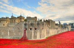 Torre di Londra con il mare dei papaveri rossi per ricordare i soldati caduti di WWI - 30 agosto 2014 - Londra, Regno Unito Fotografie Stock Libere da Diritti