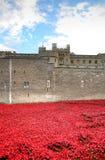 Torre di Londra con il mare dei papaveri rossi per ricordare i soldati caduti di WWI - 30 agosto 2014 - Londra, Regno Unito Fotografia Stock Libera da Diritti