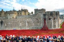 Torre di Londra con il mare dei papaveri rossi per ricordare i soldati caduti di WWI - 30 agosto 2014 - Londra, Regno Unito Immagine Stock Libera da Diritti
