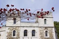Torre di Londra sanguinosa Fotografia Stock Libera da Diritti