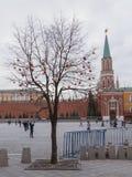 Torre di Nikolskaya del Cremlino Fotografia Stock