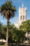 Torre di orologio dell'università di Auckland Fotografia Stock Libera da Diritti