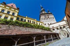 Torre di orologio, punto di riferimento della Transilvania, Sighisoara Immagine Stock Libera da Diritti