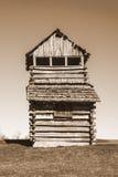 Torre di osservazione della montagna della marmotta Immagini Stock