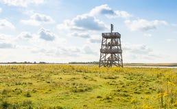 Torre di osservazione di legno in una grande riserva naturale Immagine Stock Libera da Diritti