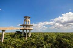 Torre di osservazione, parco nazionale dei terreni paludosi Immagini Stock