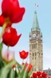 Torre di pace della costruzione del Parlamento in Ottawa Immagine Stock Libera da Diritti