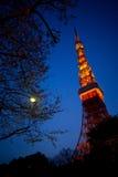 Torre di Tokyo a cielo blu crepuscolare fotografia stock libera da diritti
