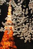 Torre di Tokyo con i fiori di ciliegia Fotografie Stock Libere da Diritti