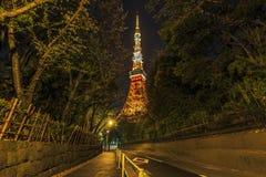 Torre di Tokyo dal fondo Fotografia Stock Libera da Diritti