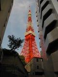 Torre di Tokyo fra le costruzioni Fotografie Stock
