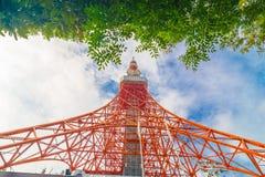 Torre di Tokyo il giorno del sole con il foregr della foglia dell'albero di verde del cielo blu Immagini Stock Libere da Diritti