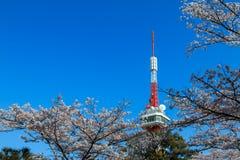 Torre di Utsunomiya Immagine Stock