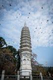 Torre do budismo do chinês tradicional do templo do nanputuo fotografia de stock royalty free