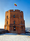 Torre do castelo de Gediminas em Vilnius Fotografia de Stock