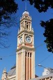 Torre do estação de caminhos-de-ferro de Luz Imagens de Stock