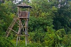 Torre do relógio do pássaro Fotografia de Stock Royalty Free