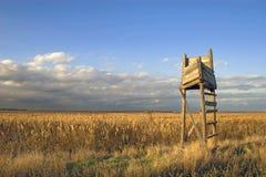 Torre do relógio do pássaro Foto de Stock Royalty Free