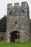 A torre do significado histórico saiu abandonado Ainda estando uma ruína esquecida de um proprietário rico imagens de stock