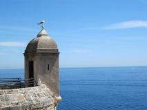 A torre e a gaivota Fotos de Stock Royalty Free