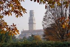 A torre e a janela entre os ramos das árvores fotos de stock