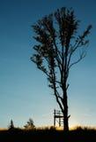 Torre ed albero di caccia sul tramonto Fotografia Stock