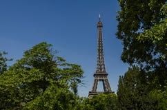 Torre Eiffel cercada por ramos de árvore, Paris, França imagem de stock
