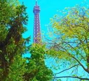 Torre Eiffel com a árvore da mola em Paris, França Imagem de Stock
