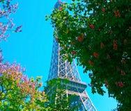Torre Eiffel com a árvore da mola em Paris, França Imagens de Stock