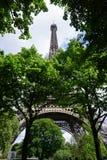 A torre Eiffel com árvores foto de stock royalty free
