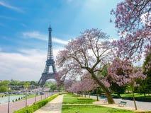 Torre Eiffel con gli alberi sboccianti nella priorità alta Fotografia Stock