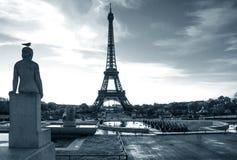 Torre Eiffel con l'uccello sulla statua Posto di Trocadero parigi france Immagine Stock Libera da Diritti
