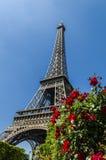 Torre Eiffel e rose rosse, Parigi, Francia fotografie stock libere da diritti