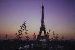 Torre Eiffel em Paris, França durante um por do sol colorido imagem de stock