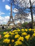 Torre Eiffel en la primavera, Francia fotografía de archivo libre de regalías