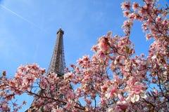 Torre Eiffel en resorte Fotos de archivo libres de regalías