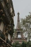 Torre Eiffel en resorte Imagen de archivo libre de regalías