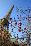 Torre Eiffel in il tempo di primavera, Parigi Fotografia Stock Libera da Diritti