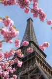 Torre Eiffel na mola, Paris, France Imagem de Stock
