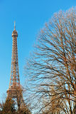 Torre Eiffel no inverno Fotos de Stock Royalty Free