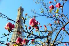 Torre Eiffel no tempo de mola Imagem de Stock