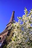 Torre Eiffel no tempo de mola Fotografia de Stock Royalty Free