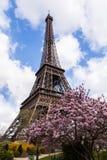 Torre Eiffel a Parigi Francia, punto di riferimento famoso di turismo fotografia stock libera da diritti