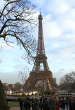 A torre Eiffel - Paris Fotos de Stock Royalty Free