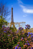 Torre Eiffel Spring2 Fotos de Stock Royalty Free