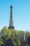 Torre Eiffel - tiro di viaggio delle passeggiate della città di Parigi Francia Immagine Stock