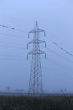 Torre eléctrica en madrugada Fotografía de archivo libre de regalías