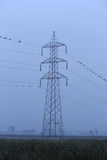 Torre elettrica nel primo mattino Fotografia Stock Libera da Diritti
